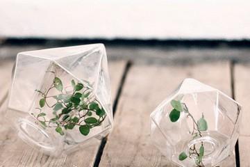 Homelifestyle-Magazine-Diamante-cristal