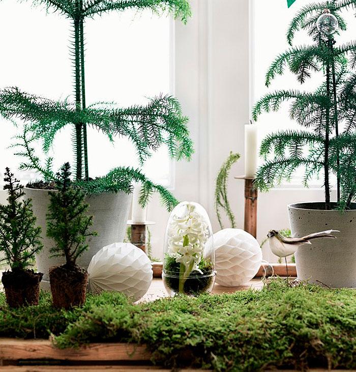 Homelifestyle-Magazine-Ideas-Navidades-Petra-Bindel-detalle
