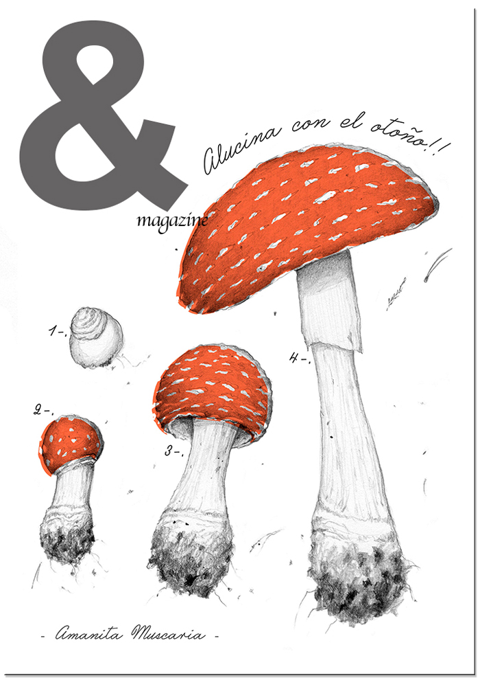 & Magazine Otoño