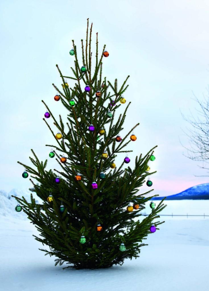 Navidad Affari