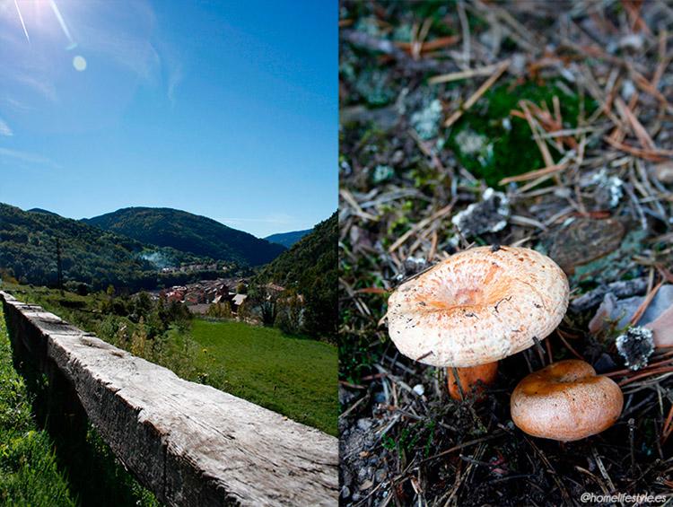Homelifestyle-Magazine-La-Vall-de-Ribes-cazadores-de-setas-Ribes-de-Freser