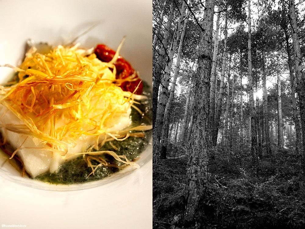 Homelifestyle-Magazine-La-Vall-de-Ribes-cazadores-de-setas-menú-resgusrd-dels-vents