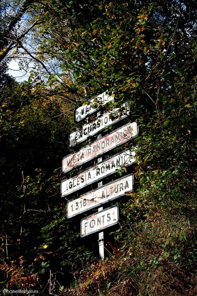 Homelifestyle-Magazine-La-Vall-de-Ribes-cazadores-de-setas-ruta