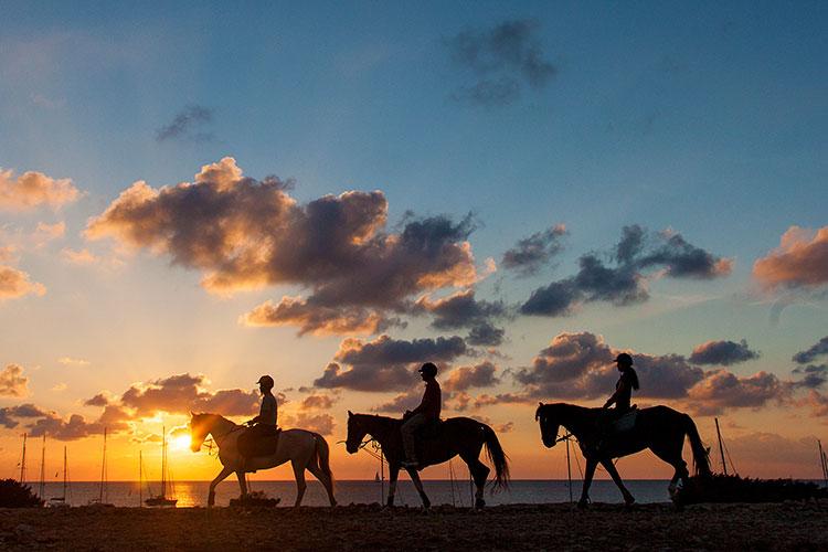 HomeLifeStyle-Magazine-Formentera-en-primavera-caballos