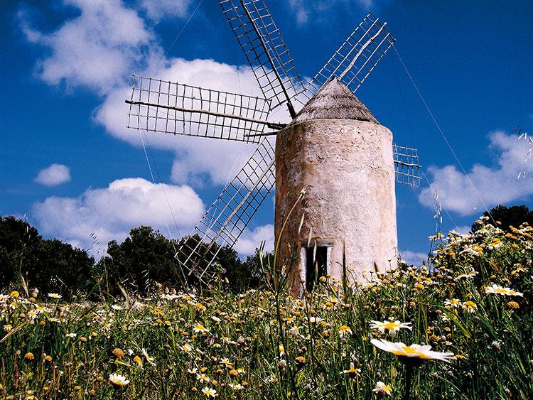 HomeLifeStyle-Magazine-Formentera-en-primavera-molino