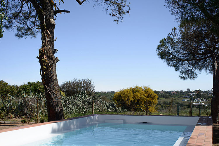 casa-modesta-pool-homelifestyle-magazine