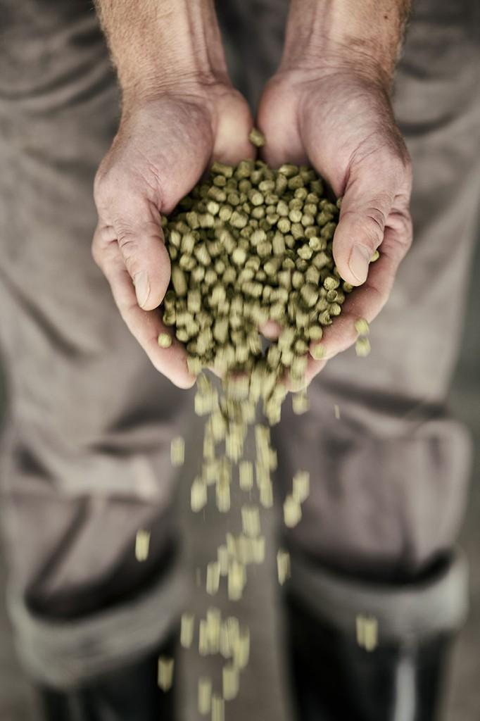 basqueland-brewing-project-lupulo-by-maria-algara-regas