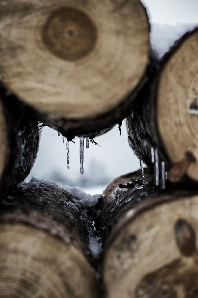 Esquiar-en-Baqueira-Beret-Rpaisaje-troncos-MariaAlgaraRegàs©
