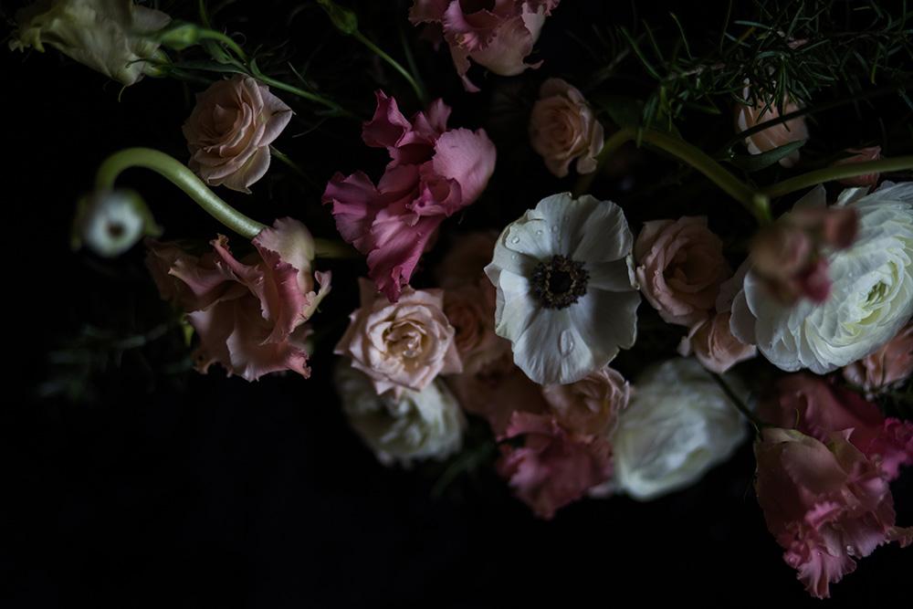 Fotografía-de-arte-floral-MariaAlgaraRegas-petals