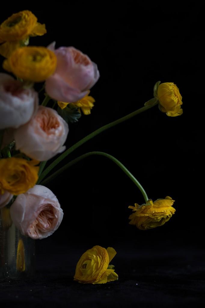 Fotografía-de-arte-floral-by-MariaAlgaraRegas-flower-pink