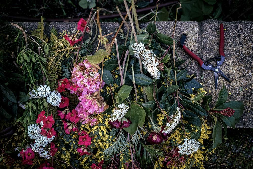 foragin-workshop-de-estilismo-fotografía-y-diseño-floral-Biblioteca-Almirall