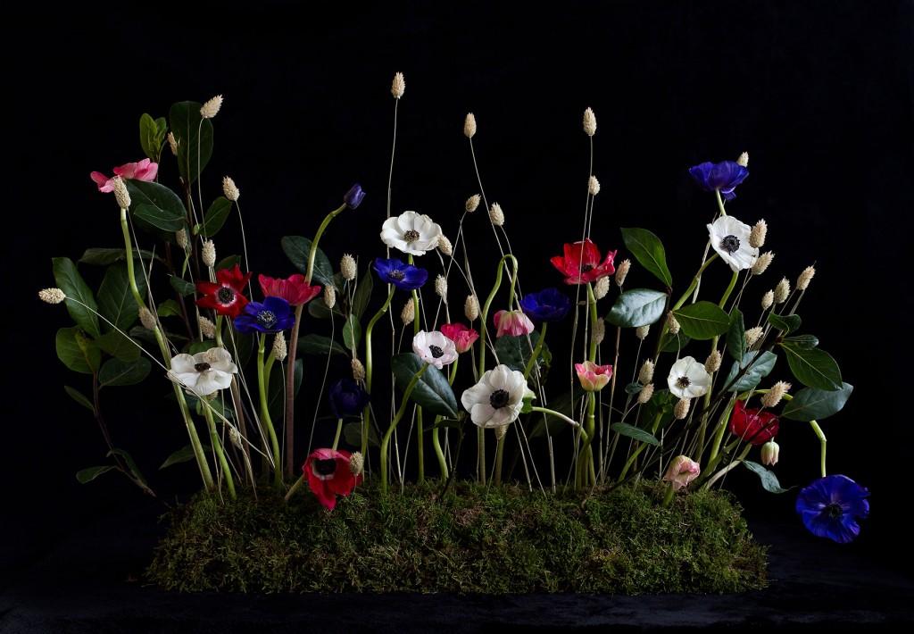 curso-de-verano-de-estilismo-Floral-photography-@MariaAlgaraPhotography-composicion
