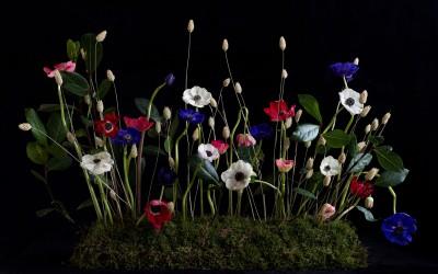 Curso de fotografia y arte floral en Barcelona