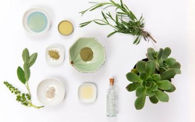 Productos-de-beleza-ecológicos