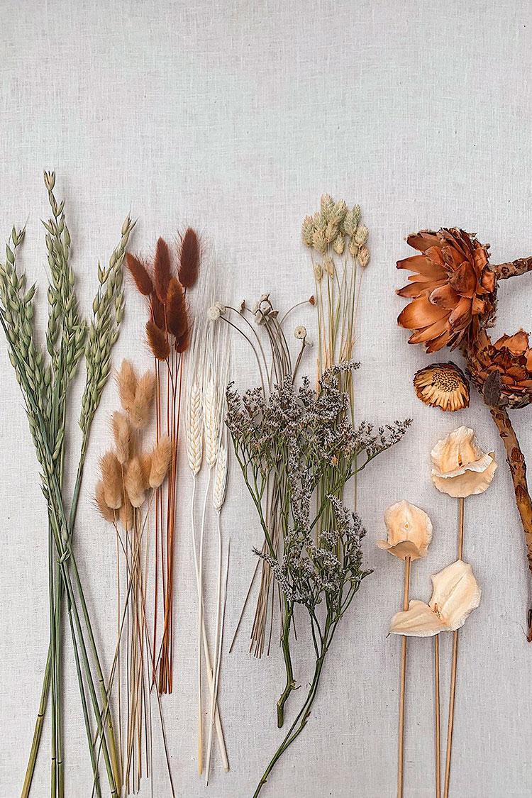 DIY-de-flores-secas-material-