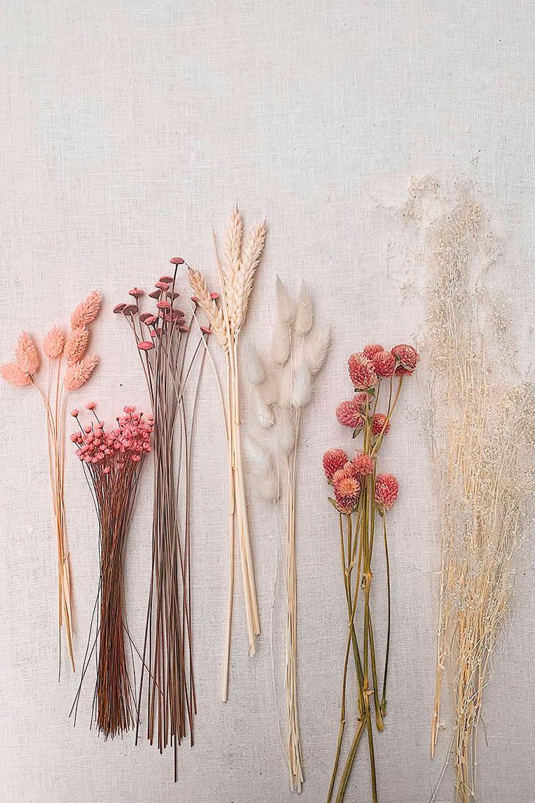 DIY-de-flores-secas-material