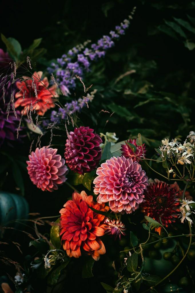 arte-floral-dalias-naranjas-@mariaalgaraphotography