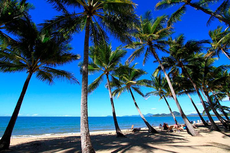 Cairns-Palm-Cove