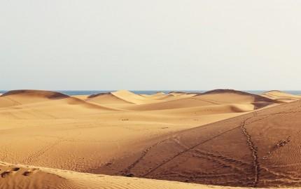 Gran-Canaria-Dunas