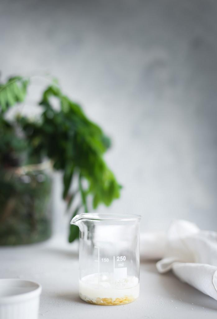 DIY:crema-de-dia-hidratante-mariaalgaraphotograhy3